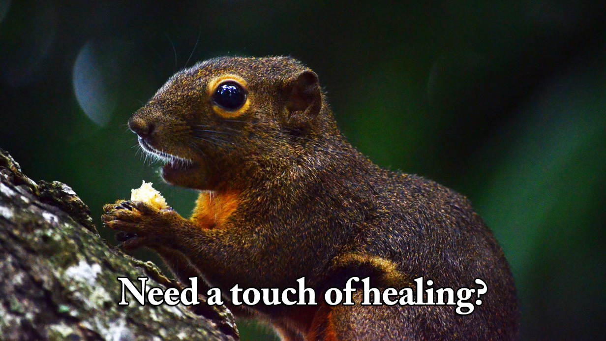 Do you need a touch of inner healing?